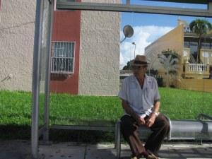 Bus Stop 20