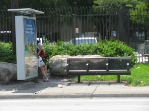 Bus Stop 24