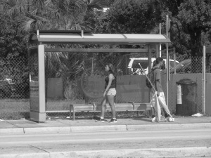 Bus Stop 3